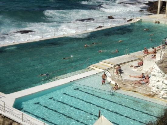 Murials Along The Esplanade Picture Of Bondi Beach Sydney Tripadvisor