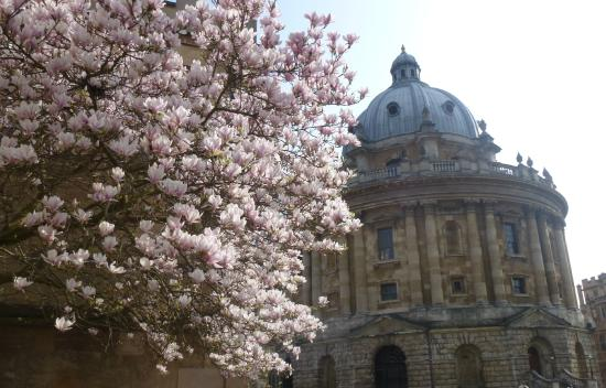 Footprints Tours Oxford : The memorable Bodleian Library