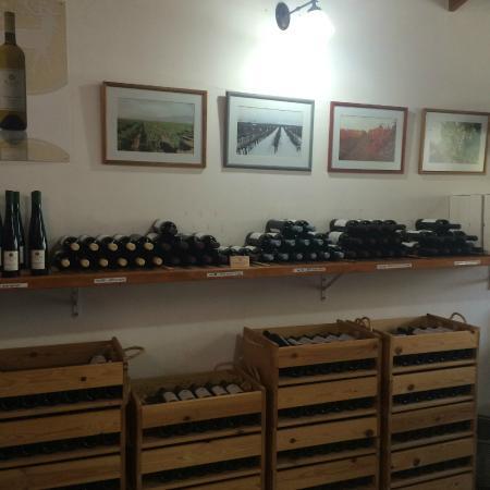 Kerem Ben Zimra, Israele: Miles Winery