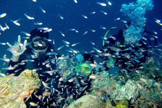 Padang Bai Fishing Village: keindahan bawah laut Blue Lagoon