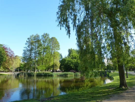 Vondelpark: Пруд в парке