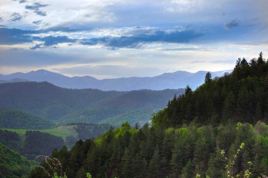 Dilijan National Park