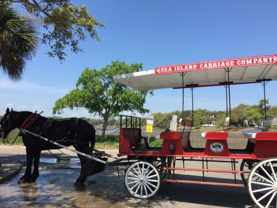 Sea Island Carriage Company: Giddy up !