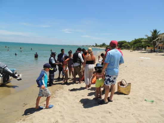 Trujillo Beach Eco Resort: Tour to the Starfish Bank