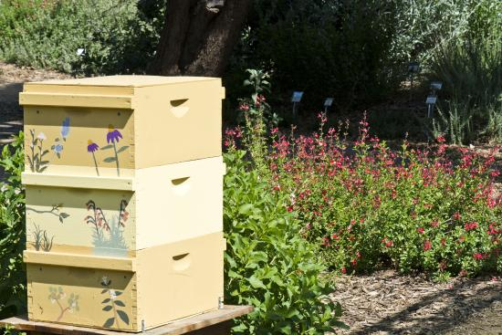 Decorative bee hive