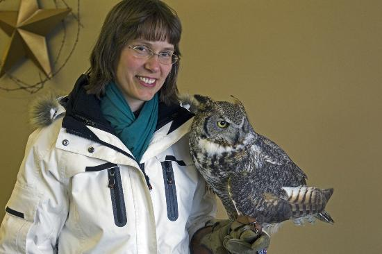 Houston, Minnesota: Alice the Great Horned Owl, who started it all.