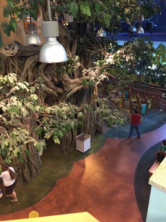 Golisano Children's Museum of Naples : Inside