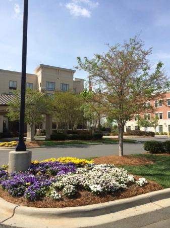Hilton Garden Inn Charlotte/Ayrsley : Lovely landscaping