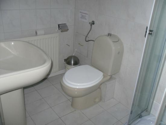 Waldhotel Seerosenhof: altes WC und Waschbecken,Abstand ca 30cm zum Waschbecken