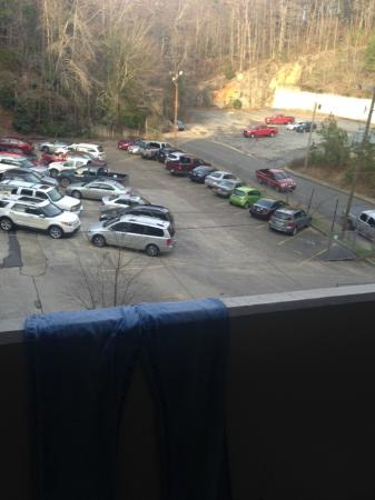 """The Springs Hotel & Spa: """"Balcony view"""""""