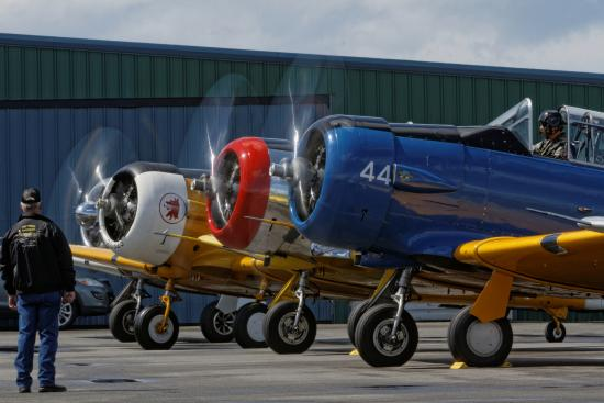 Heritage Flight Museum : T-6's on the ground ready to roll at a museum Fly Day - photo by  Thomas McCleave