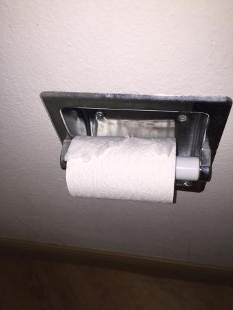 La Quinta Inn & Suites Kingsport TriCities Airport: Lucky us, we get the previous guests' leftover half roll of toilet paper.