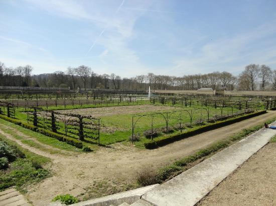 Jardin 2 picture of le potager du roi versailles tripadvisor - Le potager du roi ...