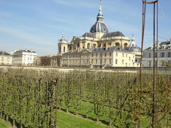 Jardin et glise st louis picture of le potager du roi versailles tripadvisor - Le potager du roi ...