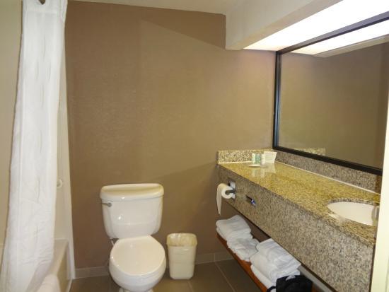 Comfort Suites Sawgrass: Parte do banheiro