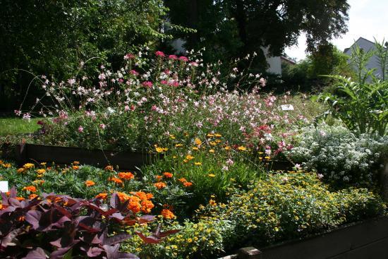 Botanischer Garten Gera