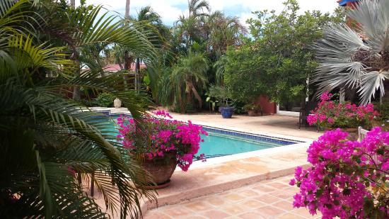 La Maison Aruba: pool