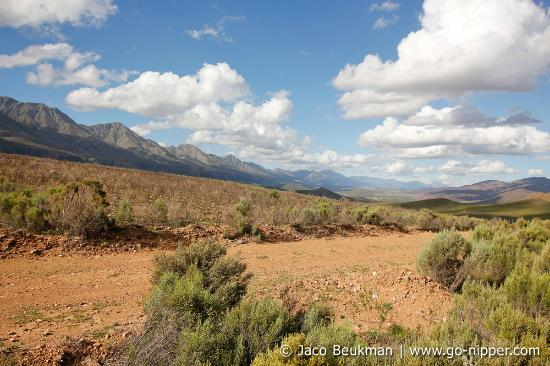Calitzdorp, South Africa: Landscape around Kruisrivier