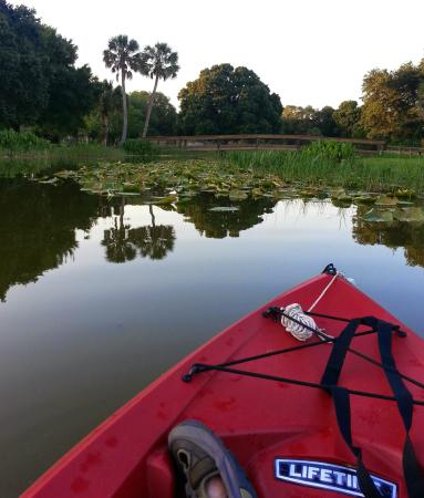 Kayaking Florida Waters