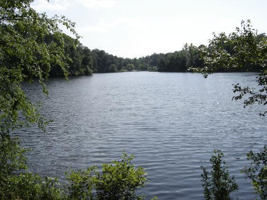 Anne Springs Close Greenway: Lake Hagler