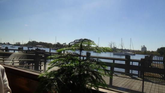 The Old Fish House: View from restaurant of the Georgetown Harbor