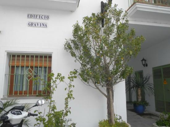 Apartamentos Gravina: àrea externa do hotel