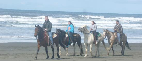 Ocean Shores, WA: Perfect Morning...