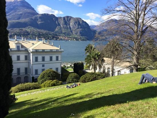 Giardini dall 39 alto foto di i giardini di villa melzi bellagio tripadvisor - Giardini di villa melzi ...