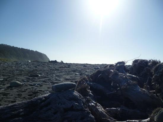 Hiking New Zealand - Day Tours : Okarito Beach