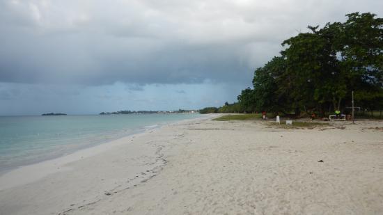 Half Moon Bay: пляж
