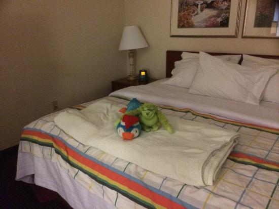 Homewood Suites by Hilton Erie: Housekeeping even treated our dog's toys well!!!!!