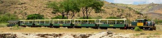 Island Railway Tours