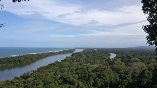 Tortuguero National Park: Vista del río y pueblo desde el Cerro Tortuguero