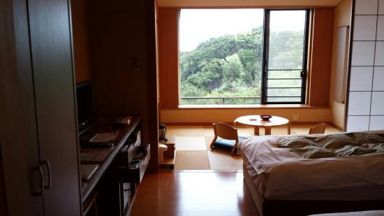Kyukamura Nanki-Katsuura : 和洋室210号室 と窓からの眺め