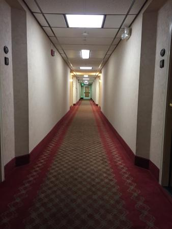 "Hotel Aria : The hallway I think I saw in ""The Shining"""