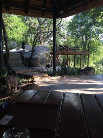 Bushriver Lodge: Beautiful place