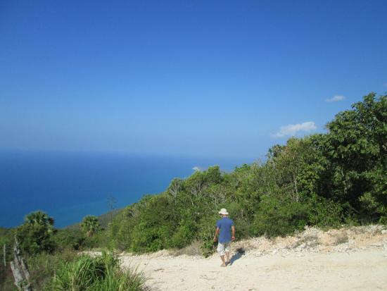 Saint Elizabeth Parish, Jamaïque : St Elizabeth,cliffs (near by hotel)