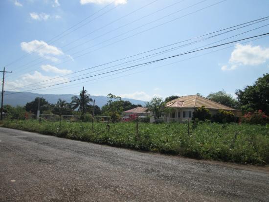 Saint Elizabeth Parish, Jamaïque : Junction town area