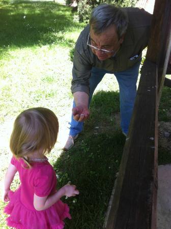 La Contea: Our daughter loved Luigi