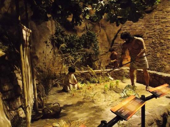 After Sin Enter The World Picture Of Creation Museum