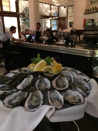 The Heritage Wine Bar: Amazing freshly shucked oysters at the bar, $20 a dozen!