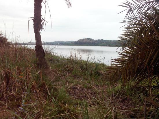 Wetlands in Roopnagar