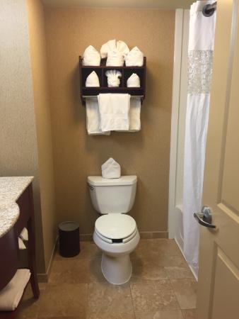 Hampton Inn Nashua : Bathroom
