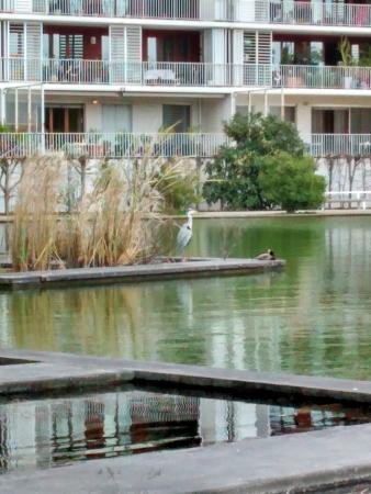 Panneau explicatif tr s p dagogique et utile photo de for Jardin botanique bordeaux