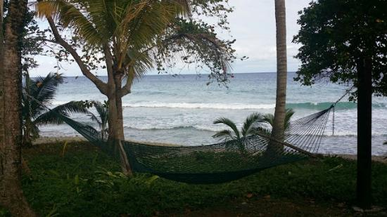 Renaissance St Croix Carambola Beach Resort Spa Swing Overlooking