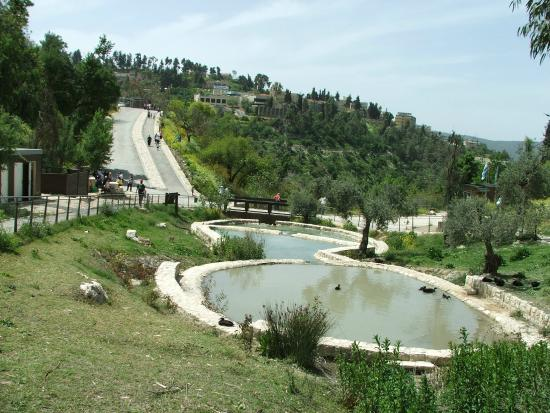 Safed, Israel: Upper pools, looking towards the entrance.