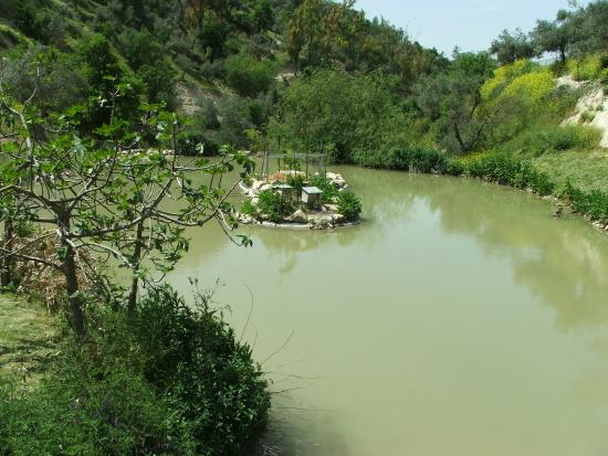 Safed, İsrail: Lower pools.