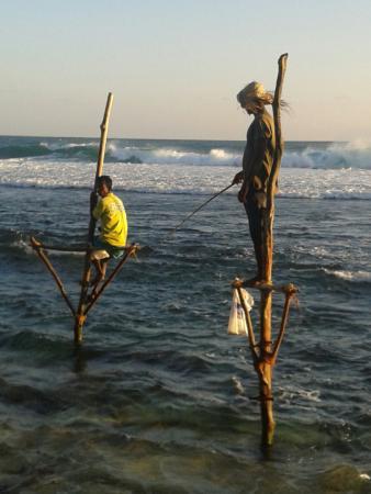 Ahangama, سريلانكا: Fisherman