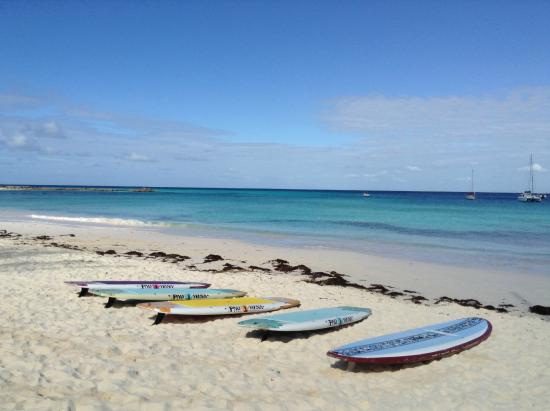St Lawrence Gap, Barbados: SUP yoga at Pebbles Beach