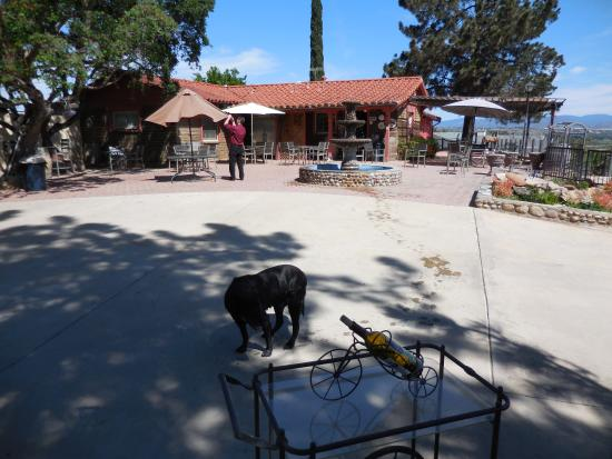 Salerno Winery: outside seating area